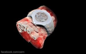 Prima radiografie 3 D în culori