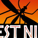 West Nile a ucis șase persoane