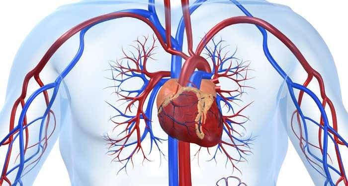 Dolj. Bolile aparatului circulator, tumorile şi bolile aparatului digestiv sunt primele trei cauze ale deceselor în 2017