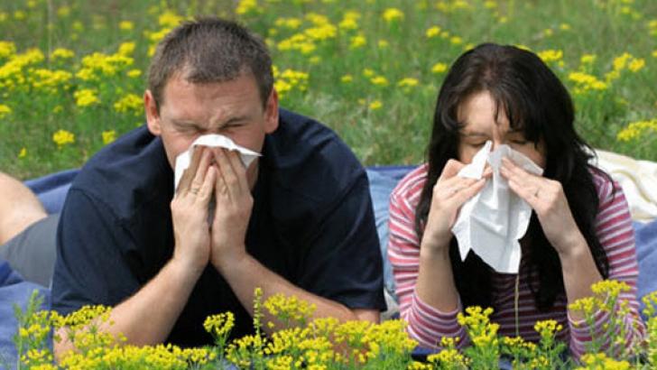 Despre procedura de desensibilizare la polen