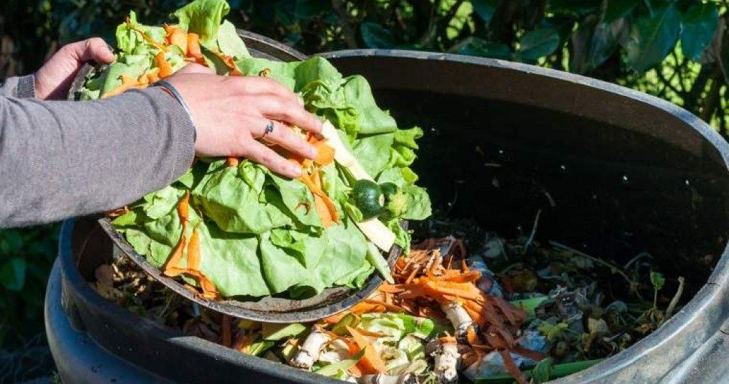 O treime din alimentele produse pentru consumul uman sunt pierdute sau irosite