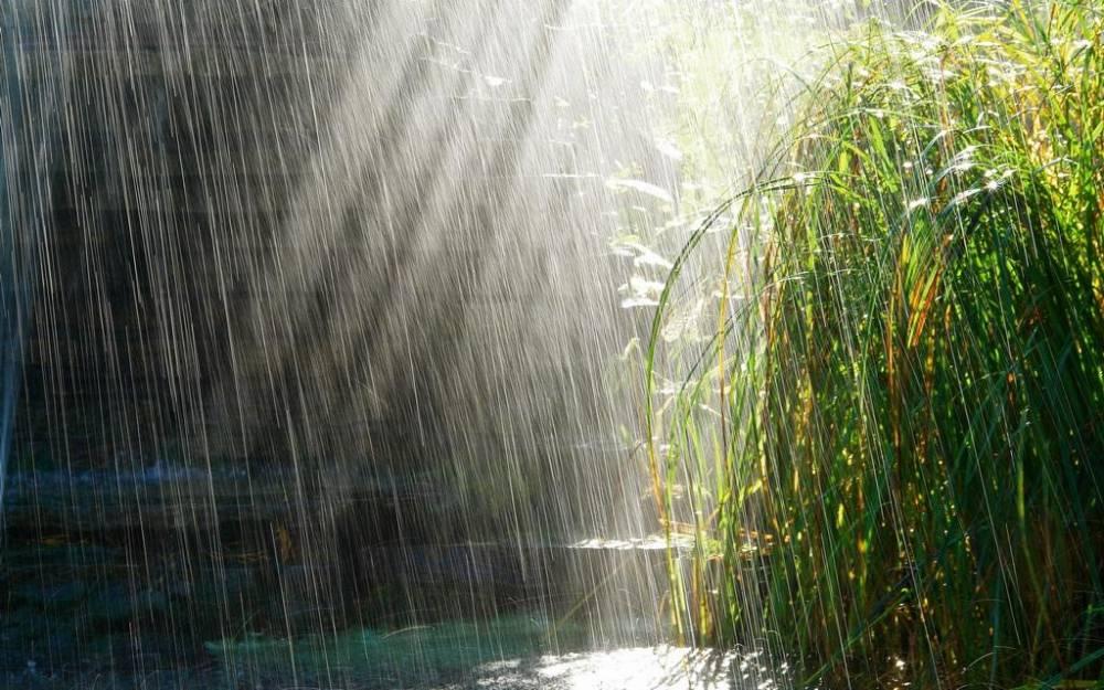 Prognoza meteo. Cod portocaliu de ploi și vânt până duminică