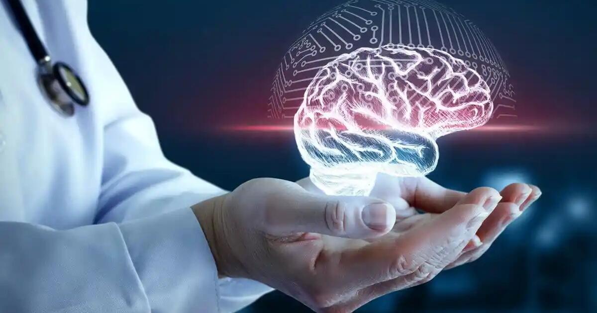 Cele trei elemente esențiale de care creierul are nevoie