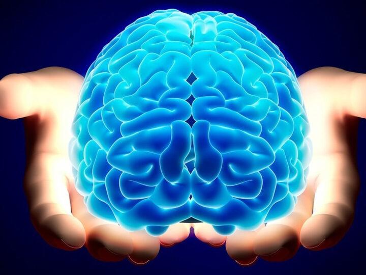 viata sanatoasa creier