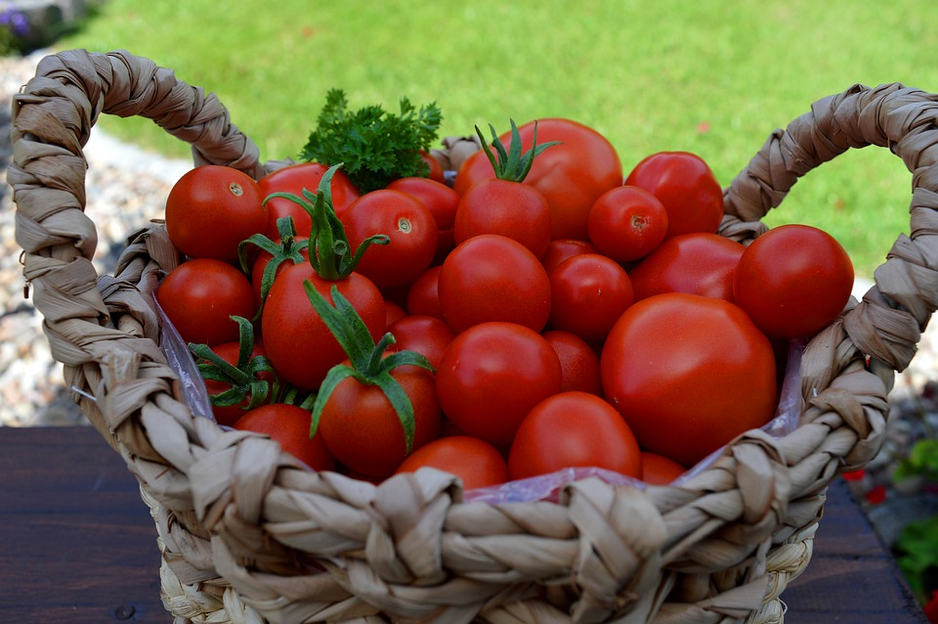 Roșiile. Alimentele perfecte pentru valul de căldură